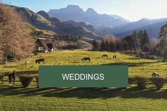 drakensberg wedding venues chapel
