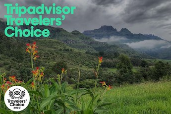 tripadvisor travelers' choice award-winner drakensberg hotel and resort