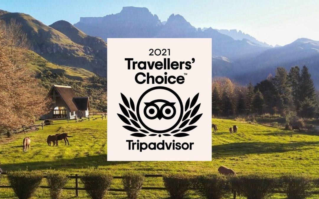 tripadvisor 2021 travellers choice award